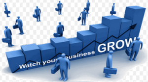 Watch Your Business Grow with SEO from Page 1 SEO Services
